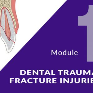 dentaltrauma-fracture-course-pic