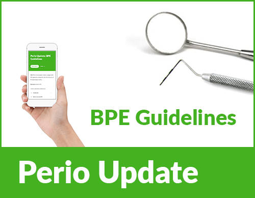 BPE-guidelines-course-pic